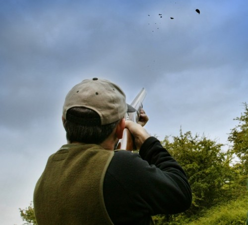It's known locally as Spey Pigeon Shooting